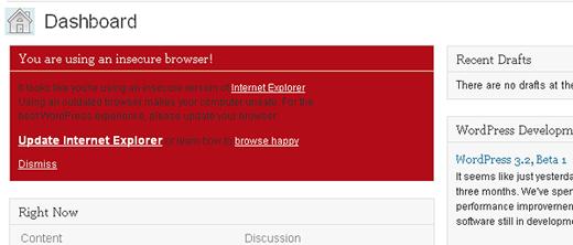 WordPress IE6 Message