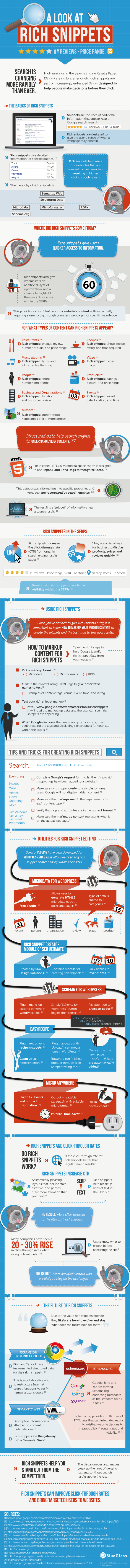 Rich Snippets Guide Infographic