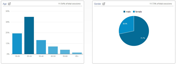 Google Analytics Audience Demographics Data