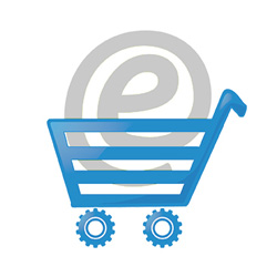 ecommerce solution provider in kolkata
