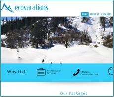 responsive website design services in kolkata